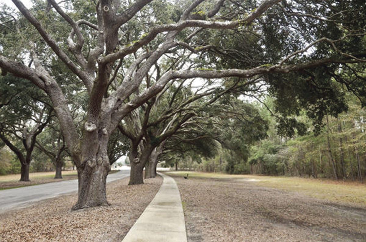 The Oaks entrance
