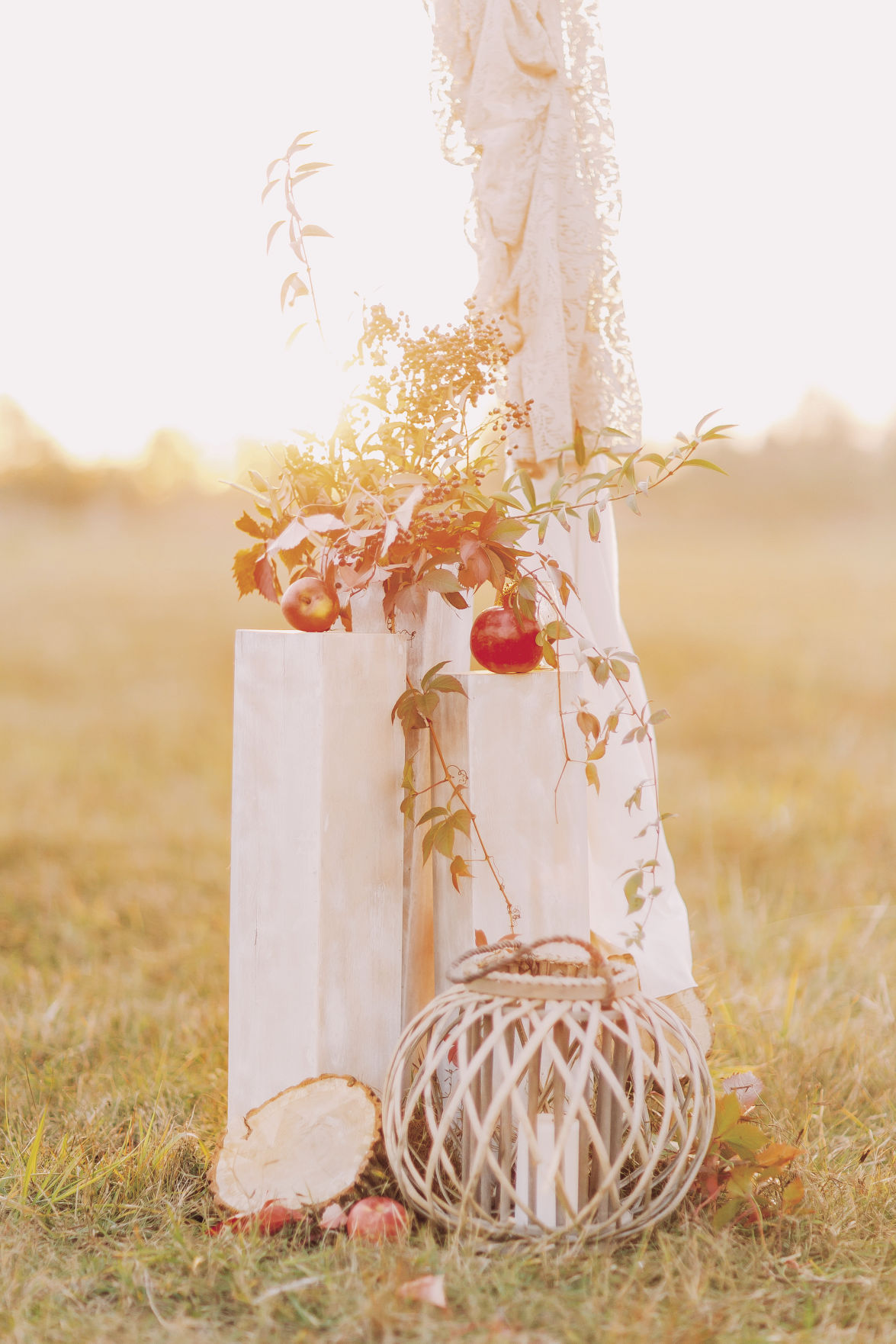 Wedding decorations with red apples on the field close up