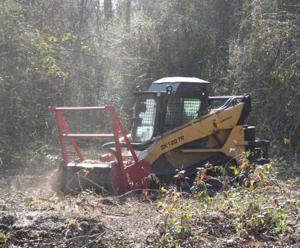 Forestry Mowing.jpg