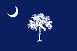 LIBRARY South Carolina state flag