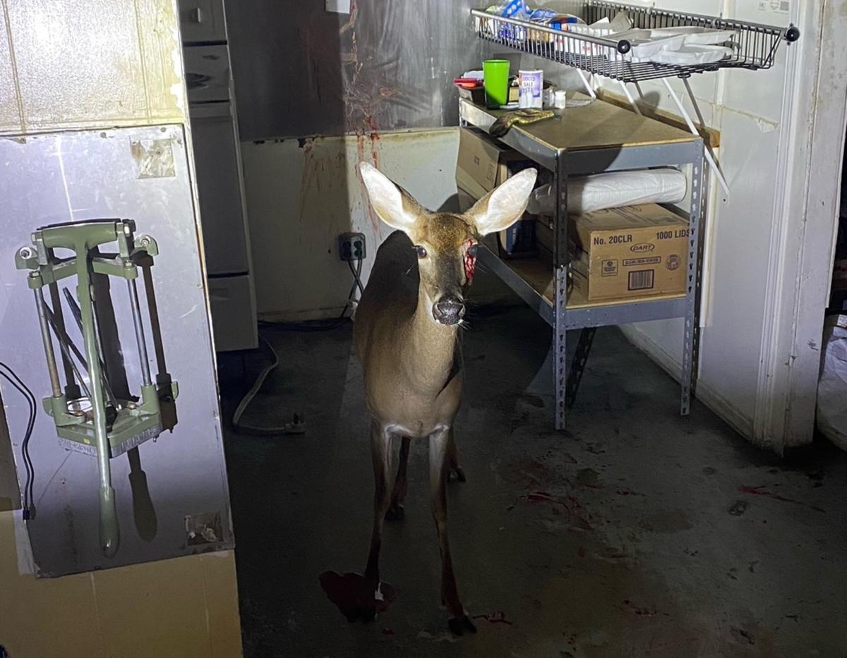 102020 deer restaurant 1
