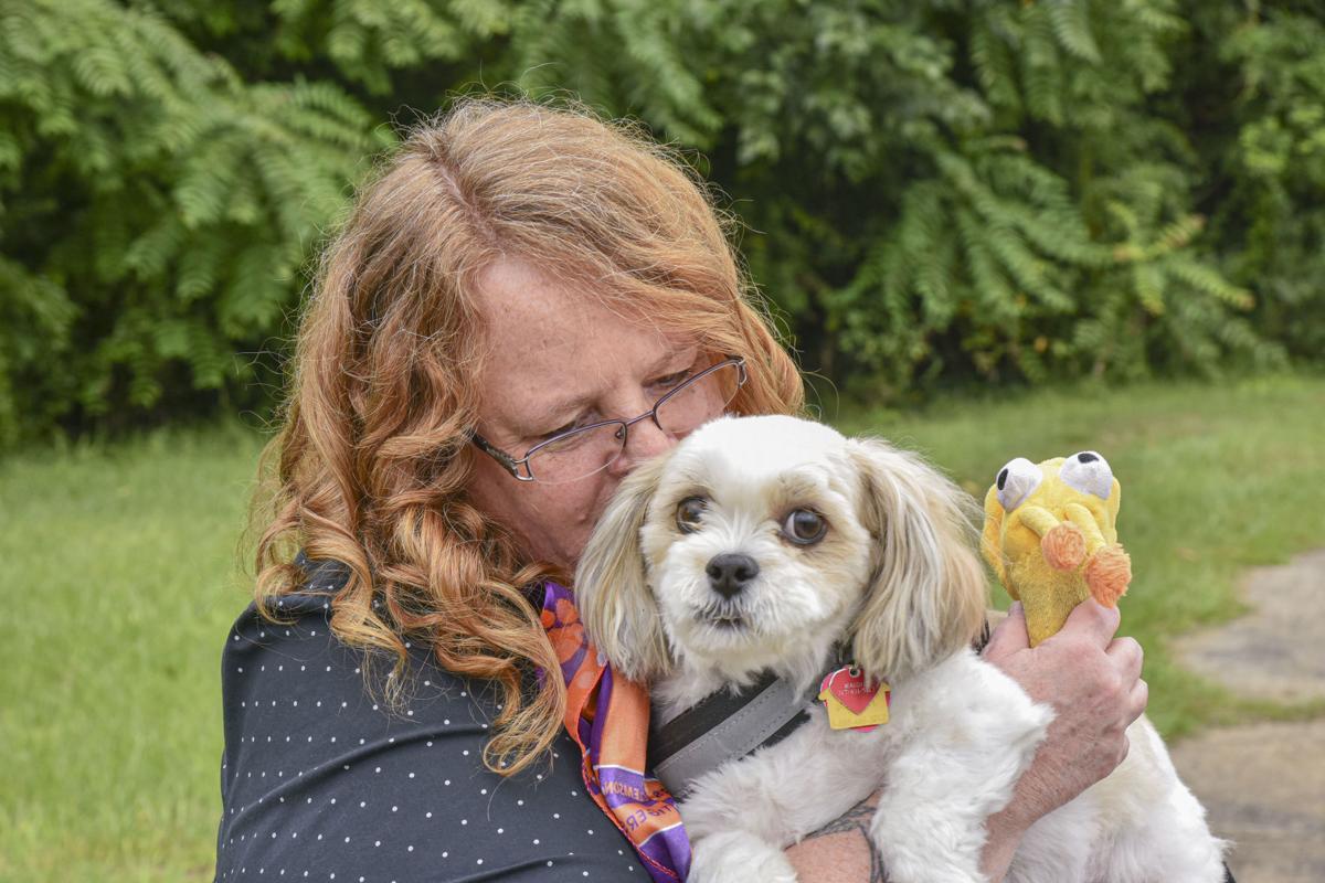 Pet Idol Winner Maddie and Jen