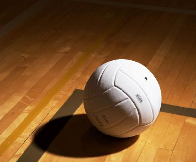 SPORTS LIBRARY Generic volleyball illustration 2