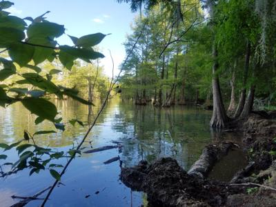 Lake Marion (copy)
