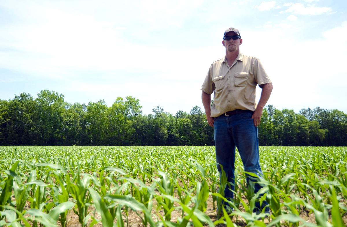 Governor plans veto of aid for S C  farms | Business