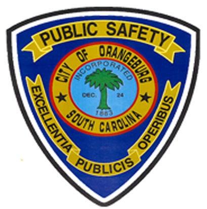 LIBRARY DPS logo