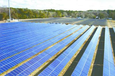 Colleton Solar Farm