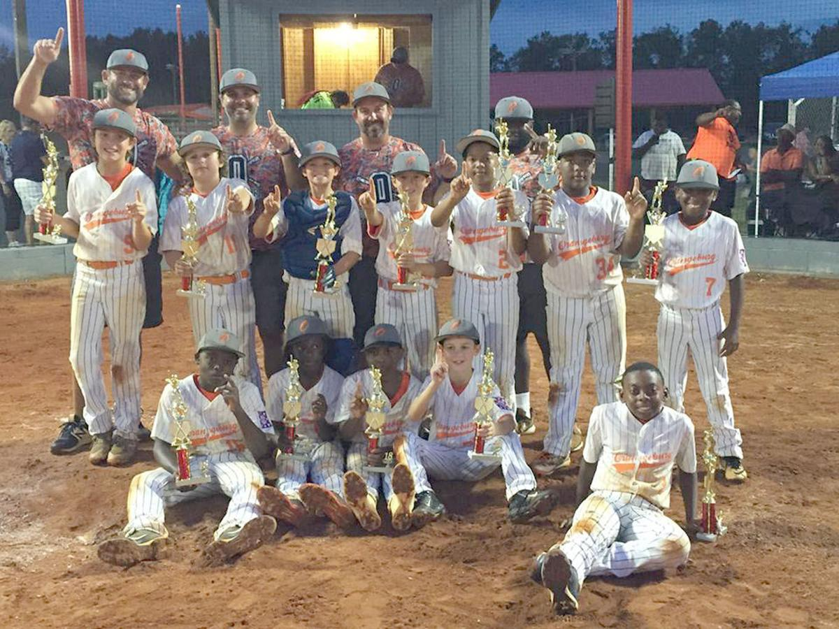 Orangeburg Dixie Minors AAA All-Stars take district