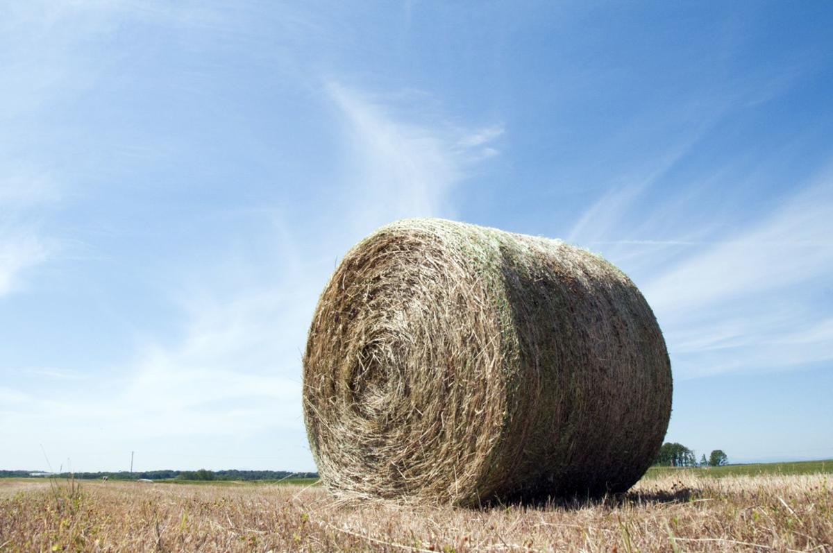 FARM Clemson drought 2.jpg