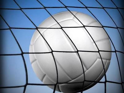 SPORTS LIBRARY generic volleyball logo