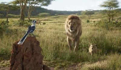 MOVIE REVIEW:'The Lion King' is a virtual reality postcard