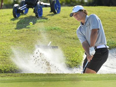 Positivity key for Buffalo golf teams at District Tournament