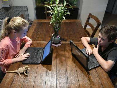 Parents, students, schools adapt to online learning