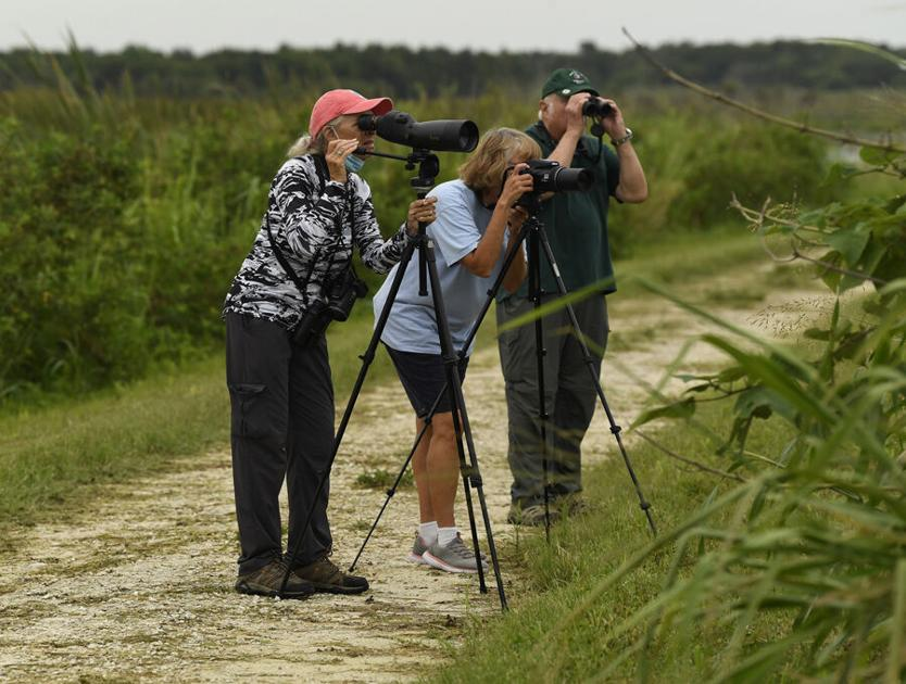 Water districts offer ways to enjoy nature - The Villages Daily Sun