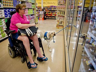 Lawmakers consider pet-related legislation