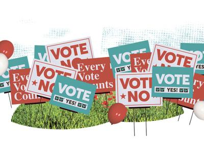 Voting early? What you need to know