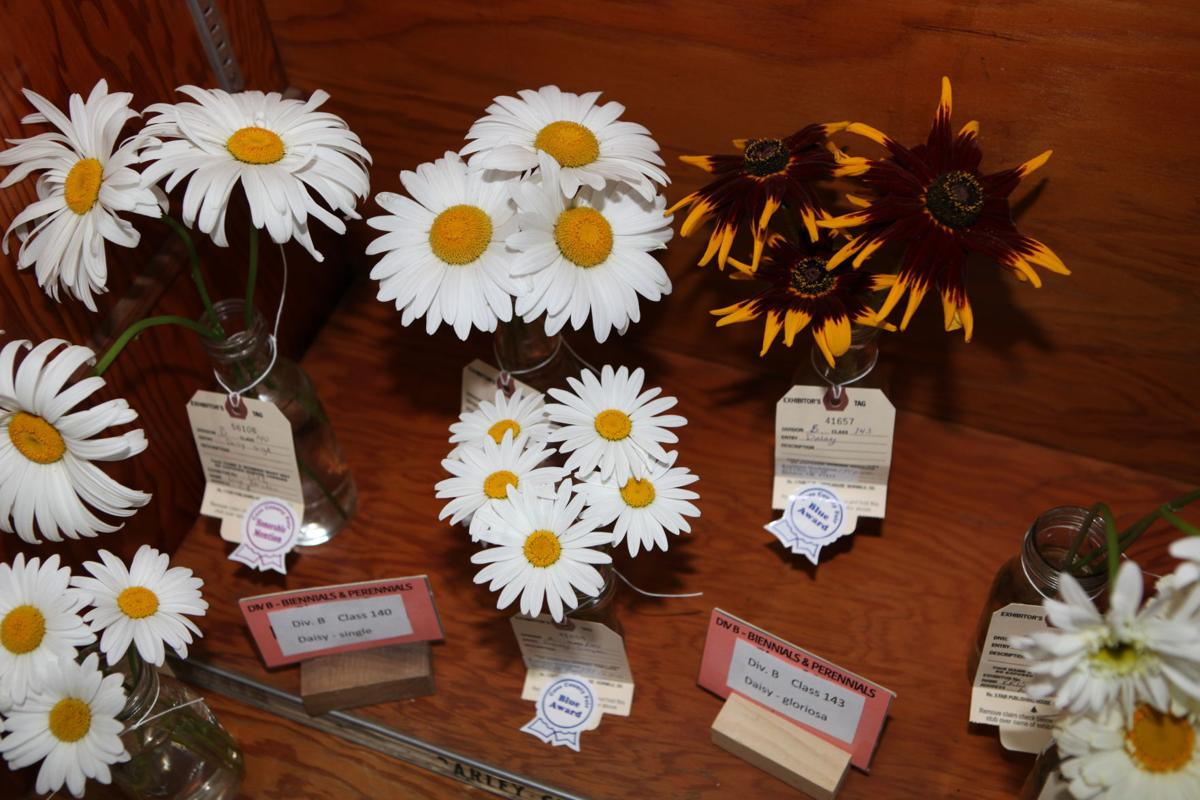 Coos County Master Gardeners New Location At Fair South Coast