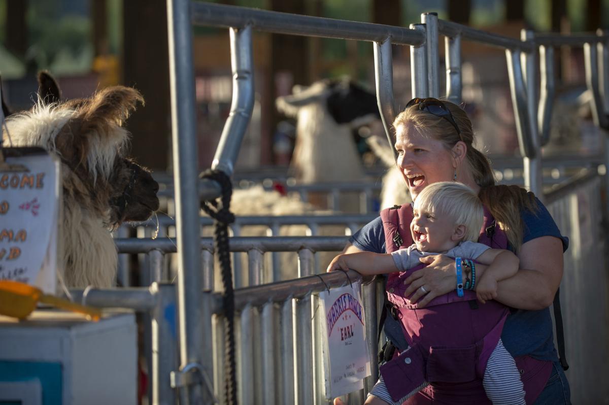 Coos County Fair