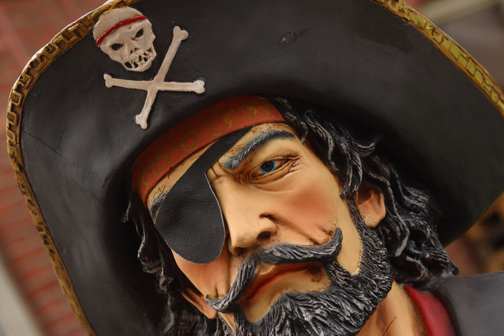 87815801 pirate