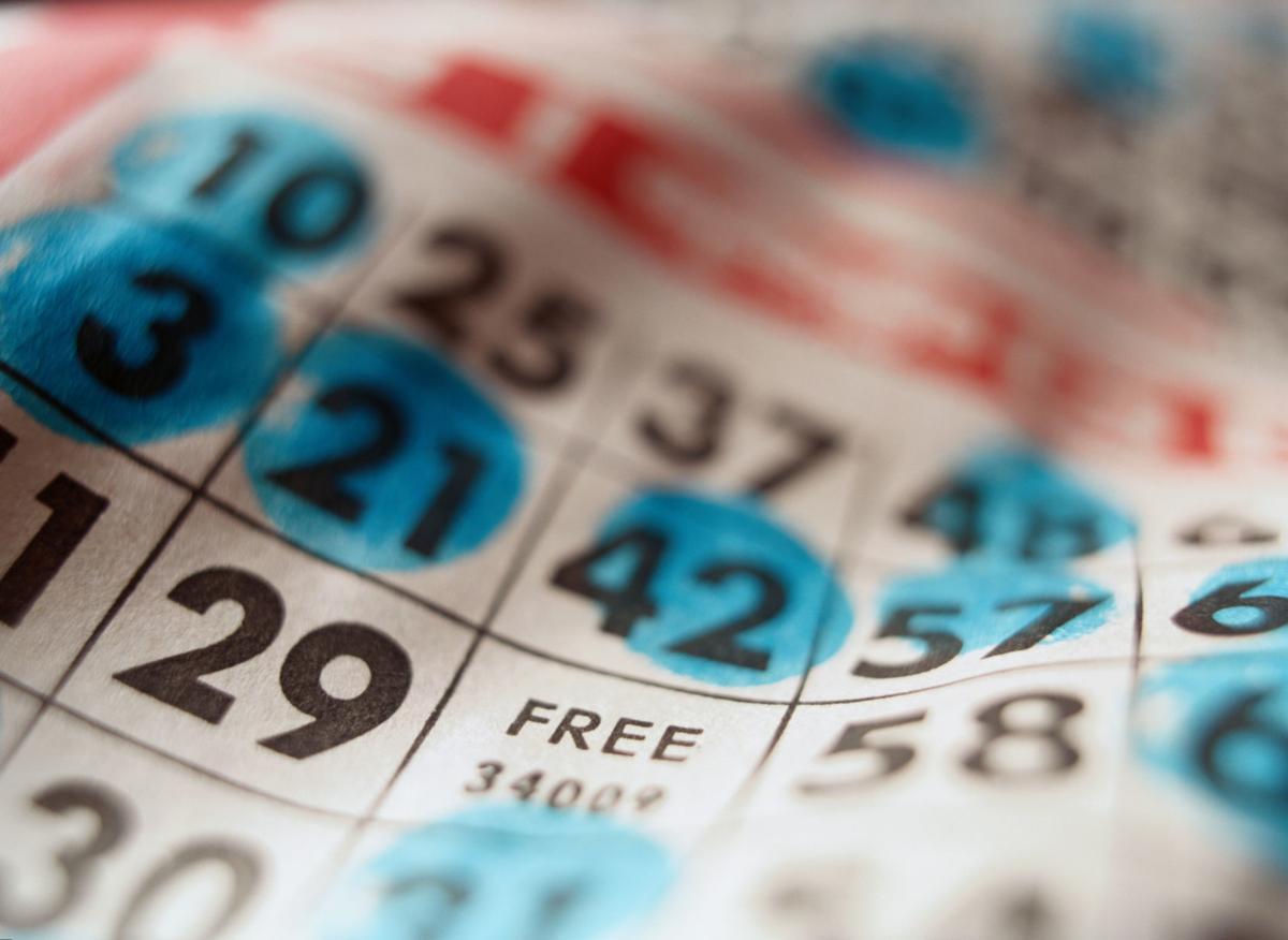 53919707 bingo