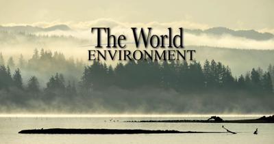 The World Environment STOCK