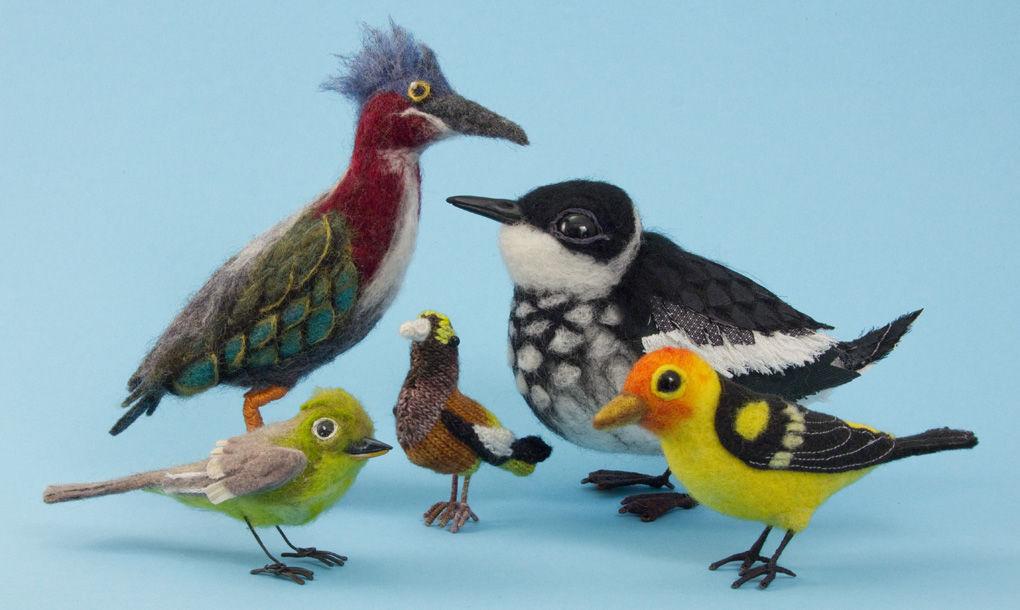 Birds of the Elliott