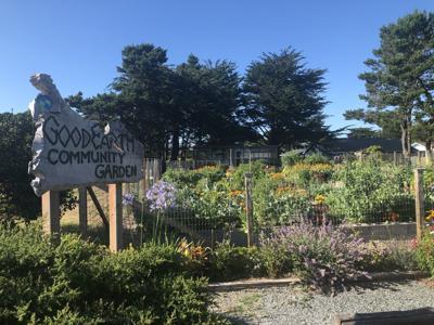 Bandon's Good Earth Community Garden