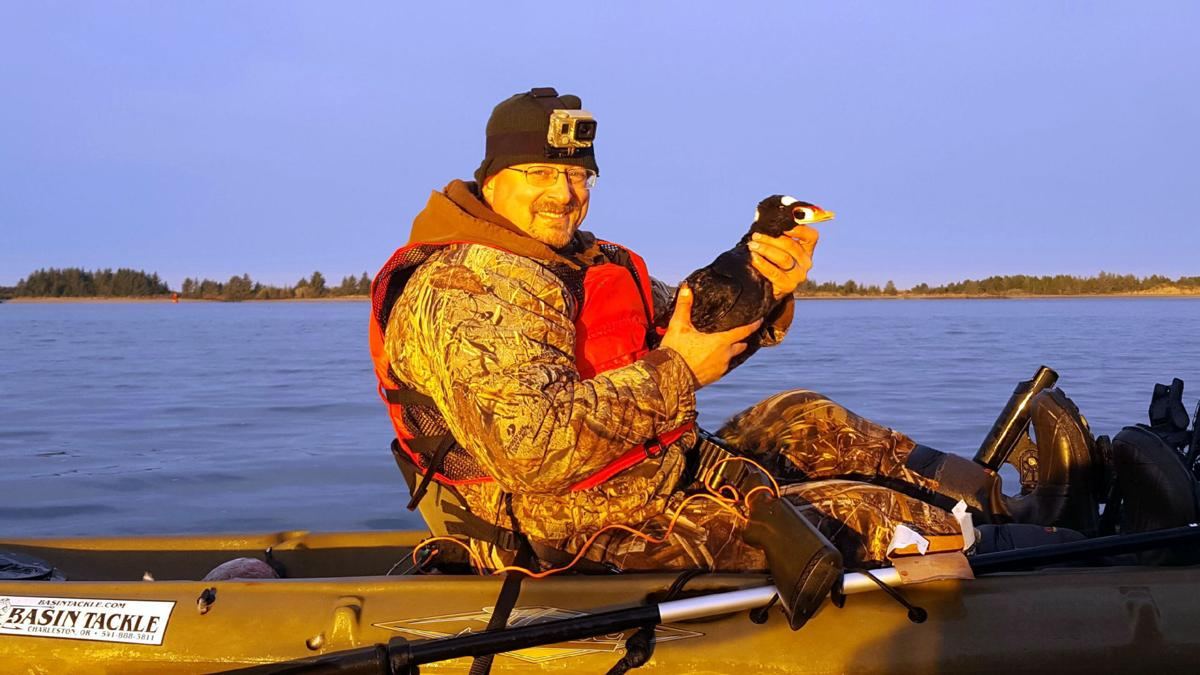 scoter hunting