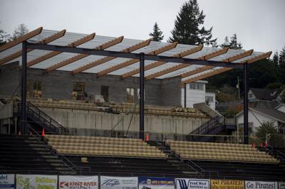 Marshfield Stadium Roof