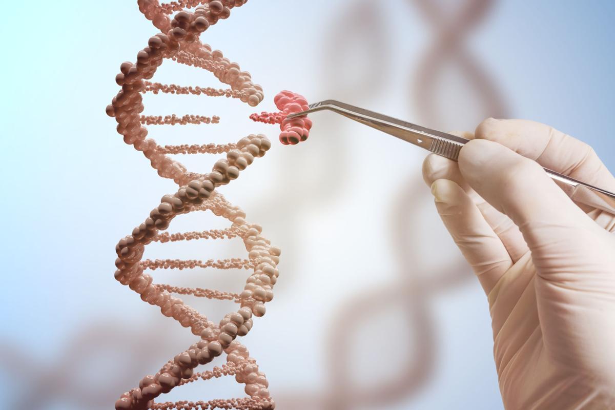 667138650 DNA