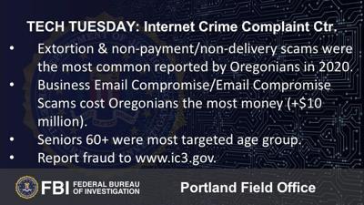 Building a Digital Defense with the Internet Crime Complaint Center (IC3.gov)