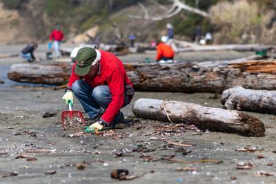 SOLVE Bandon Beach clean up