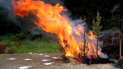 research wildfire OSU