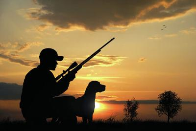 Hunting groups call for more accuracy in IP 13 ballot title