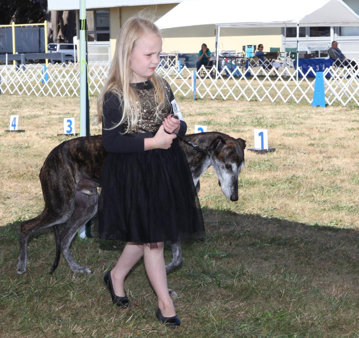 A girl and her greyhound