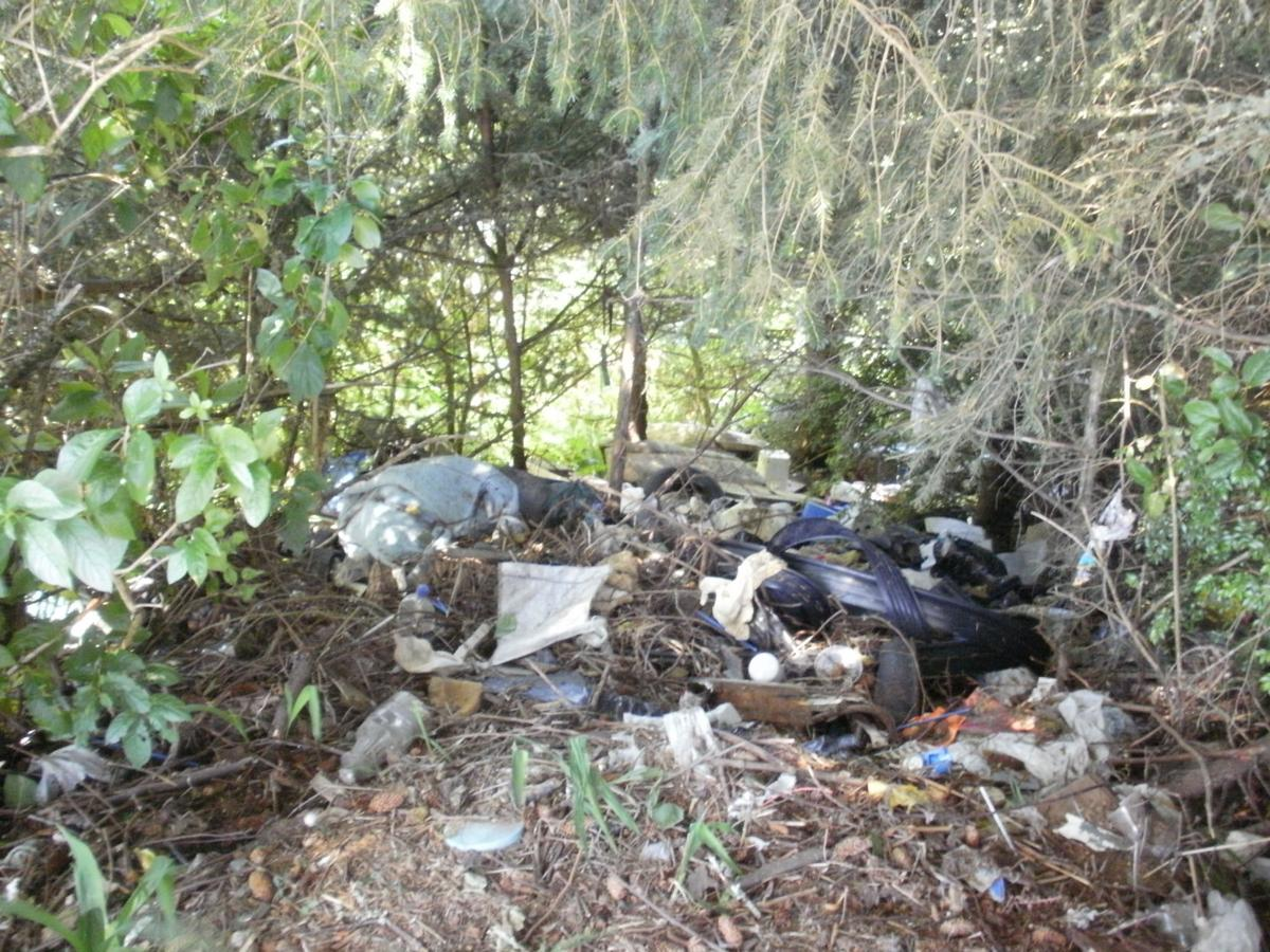 Man fined for illegal dumping