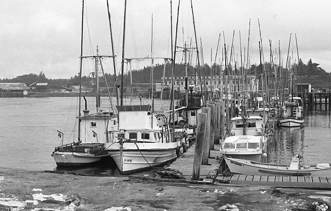Fishing Industry in 1960s