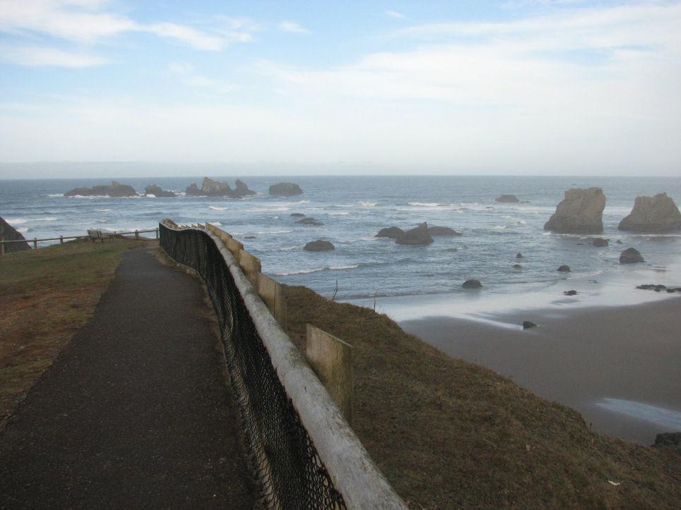 Whale Watch Week - Face Rock viewpoint