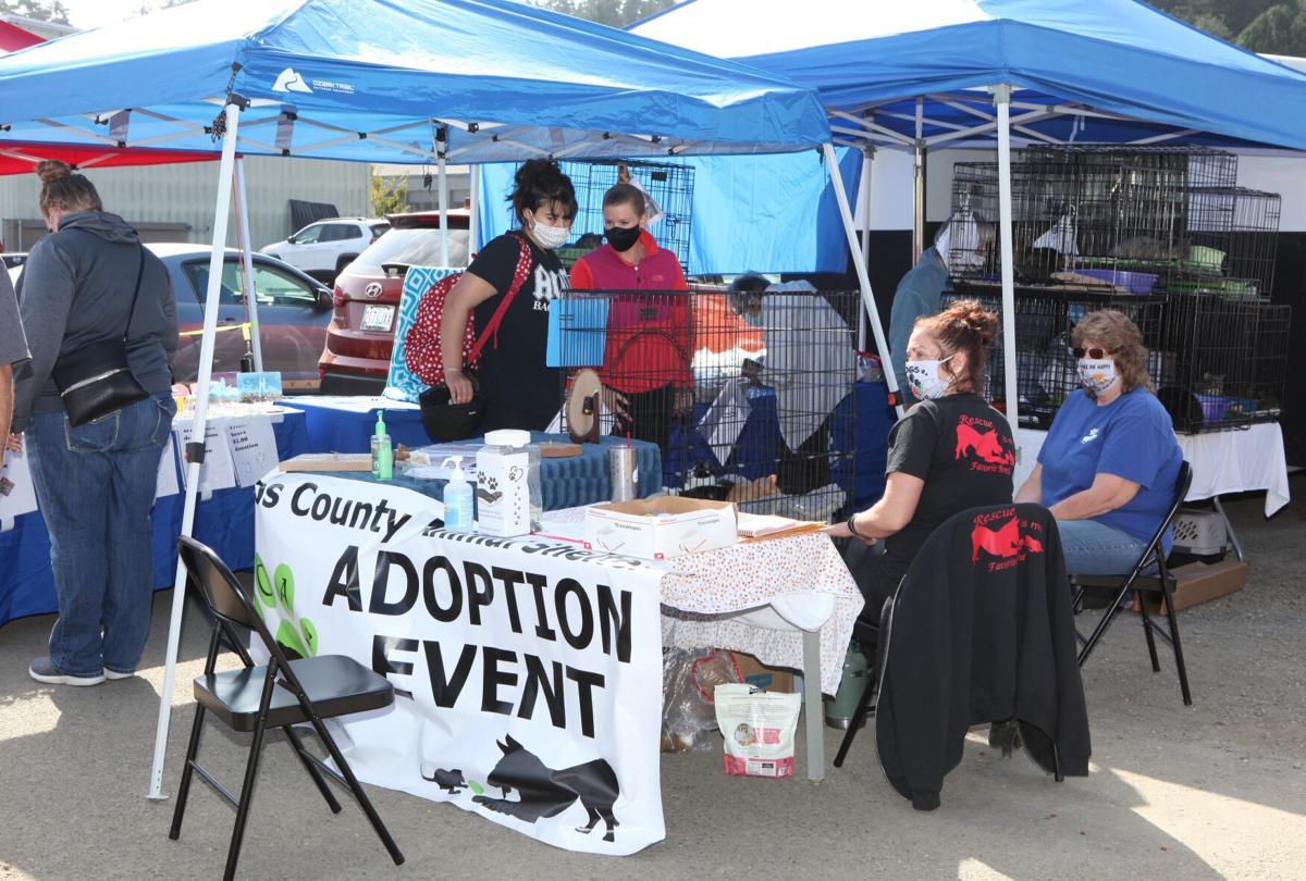 Barktoberfest 2020 - CCAS adoption event