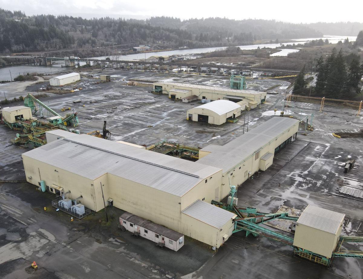 Georgia Pacific mill purchase commercial development company