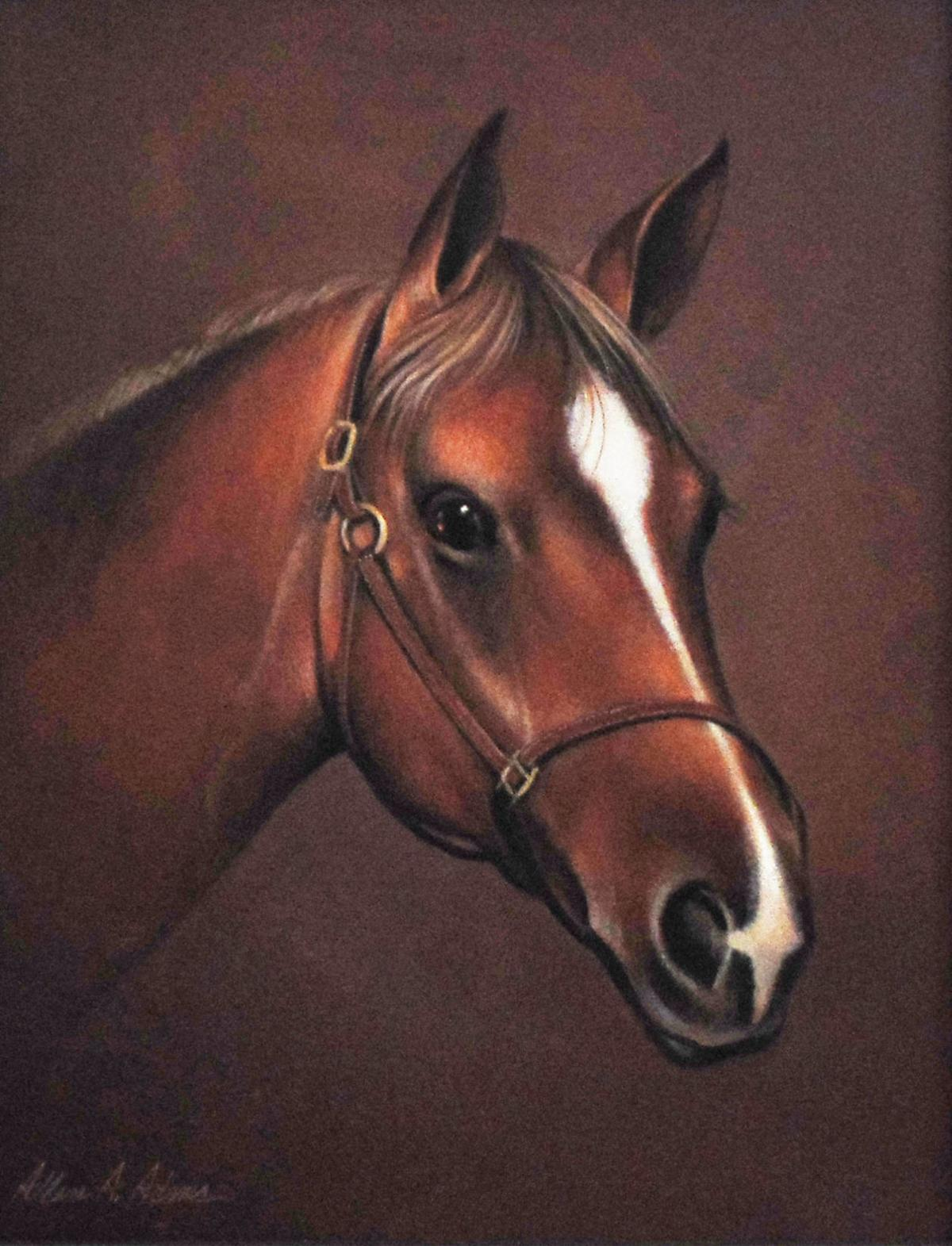 Tony Adams horse