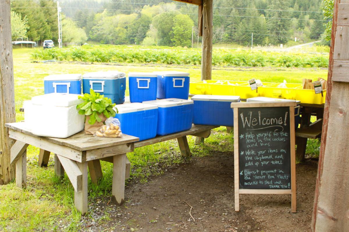 Valley Flora farm stand