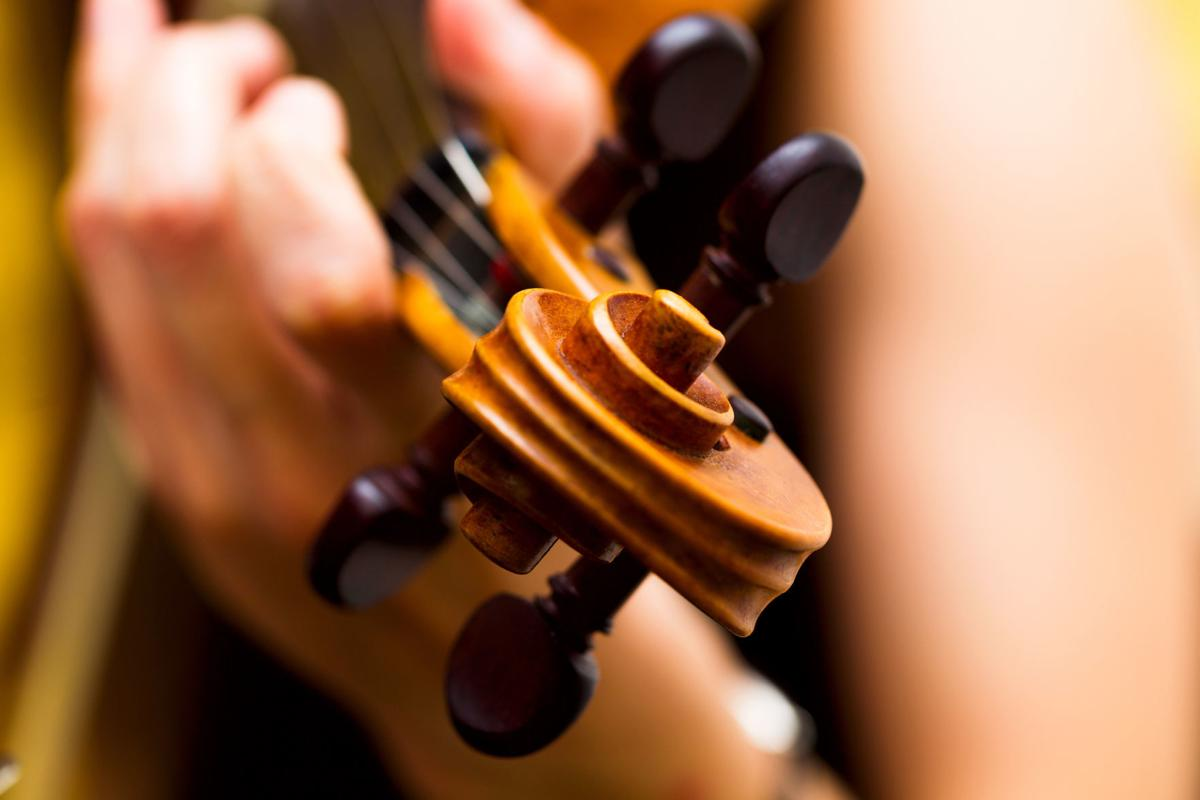 637169216 violin fiddle