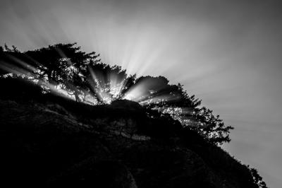 Dave Reynolds' black and white photography