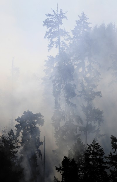 Two fires burn timberland near Scottsburg, Brookings