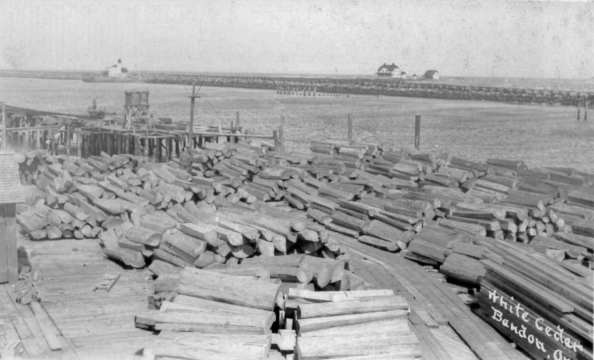 White cedar logs at Port of Bandon waiting for export, circa 1923
