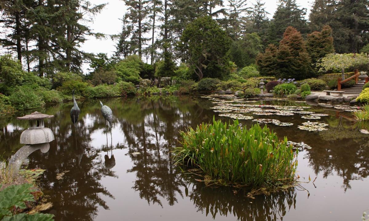 Shore Acres State Park pond