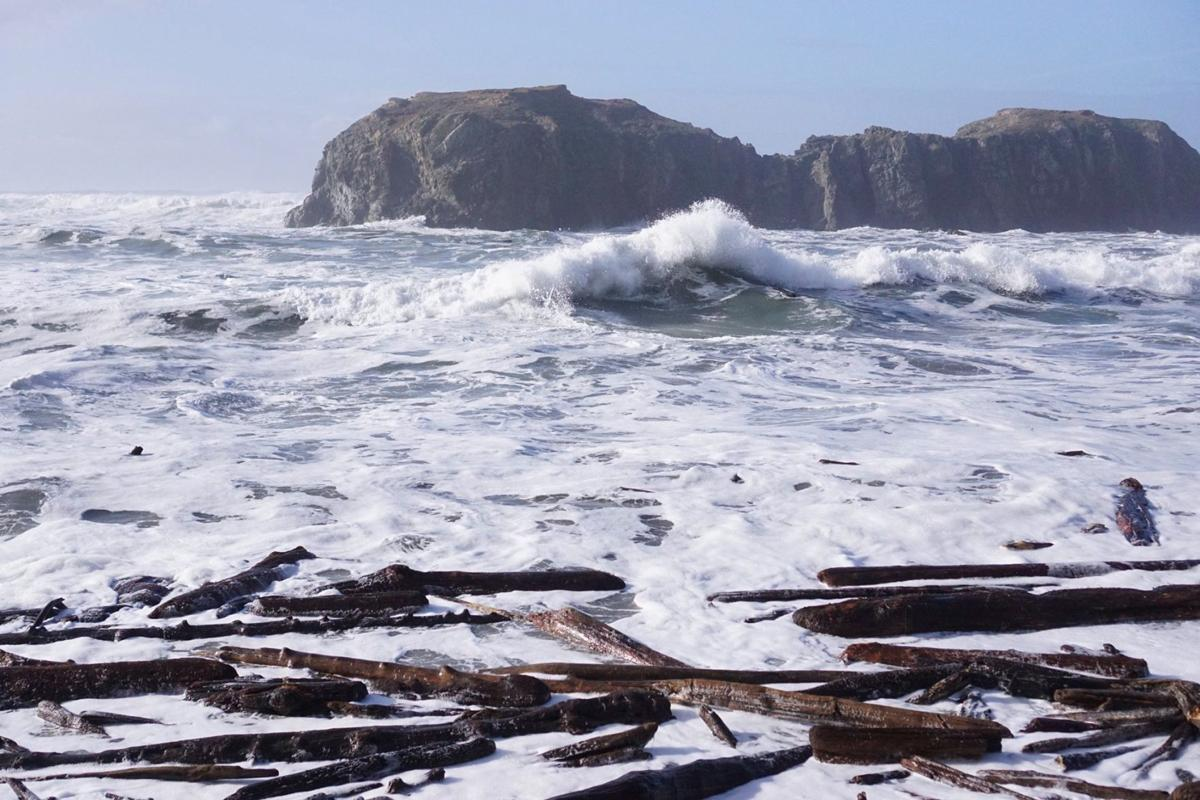 Elephant Rock at Coquille Point in Bandon during high surf advisory