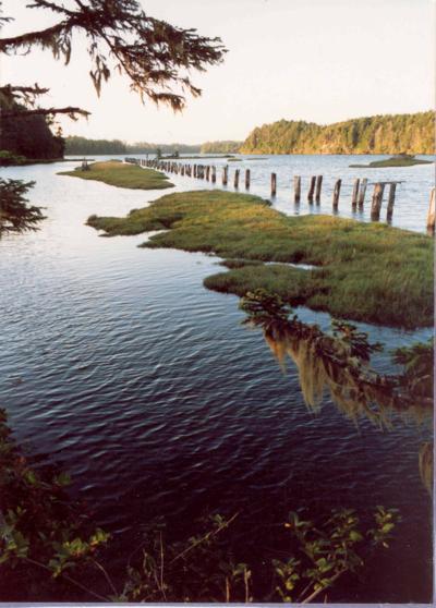 South Slough National Estuarine Research Reserve