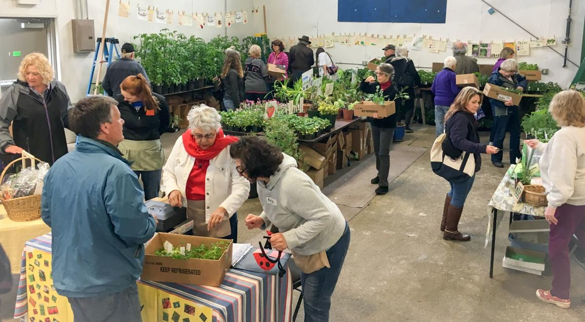 Good Earth Garden plant sale